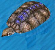 War Turtle