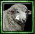 Iroquois Home City 1 (4 Sheep)