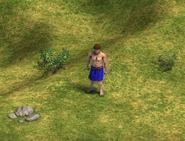 Villager DE