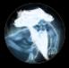 Нереализованная иконка архидруида-1