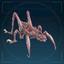 Личинка прыгончей-иконка