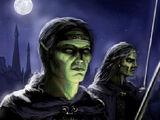 Тёмные эльфы