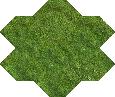 Grass. AoW I