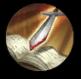 Нереализованная иконка теократа-3