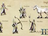 Высшие эльфы