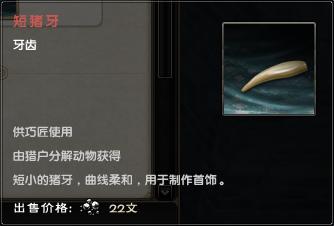 Short Boar Tooth