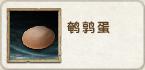 Quail Egg Icon
