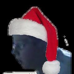 Leopold wearing a Santa Hat.