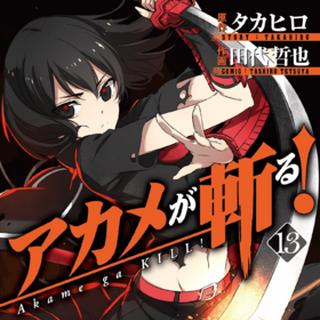 Volume 13 manga cover featuring Kurome