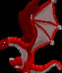 Adult Dragon