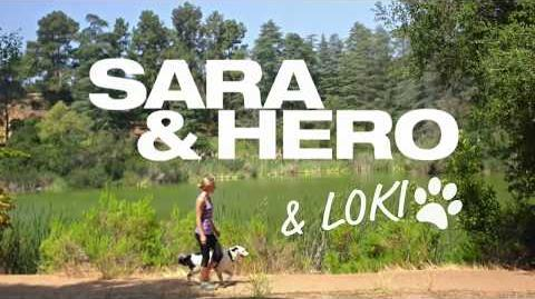 America's Got Talent 2017 Sara, Hero & Loki Intro Interview S12E17