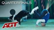 Cute Dog Act Lukas & Falco Live Large With These Amazing Dog Tricks! - America's Got Talent 2019