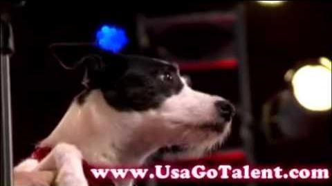 America's Got Talent - Houston & Miami Season 4 Episode 4 Part 2