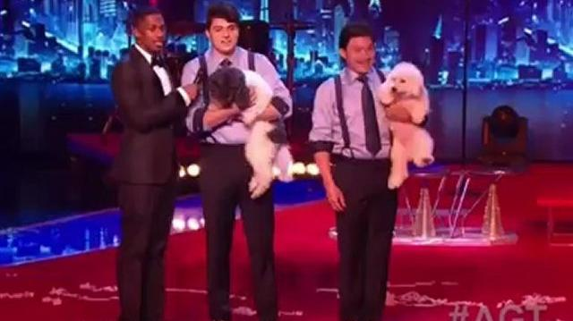 Olate Dogs, The Finals ~ America's Got Talent 2012-0