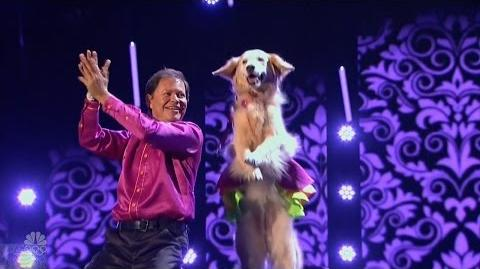 America's Got Talent 2016 Jose & Carrie The Dancing Dog Full Judge Cuts Clips S11E10