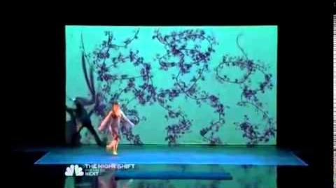 America's Got Talent 2014 Blue Journey Shadow Act Auditions 1