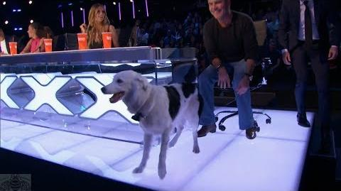 America's Got Talent 2017 Sara & Hero Judges' Comments Judge Cuts S12E08