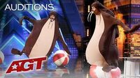 Sethward Returns As A Walrus And Falls Off Stage - America's Got Talent 2019