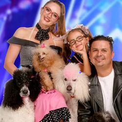 Pompeyofamilydogsnbc