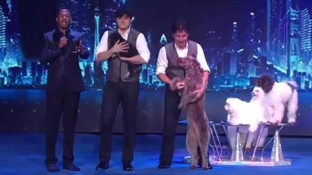 Olate Dogs, 2nd Semifinal ~ America's Got Talent 2012-0