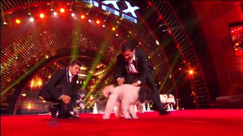 Olate Dogs perform Live ~ AGT 2013, The Results-0