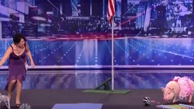 Smooch Piggy, Auditions ~ America's Got Talent 2012-0