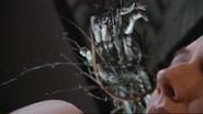 Steven's hand
