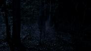 Shadowman 02