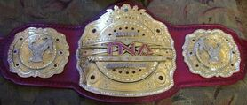 (Legends) NWE Championship