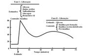 Pancreas 4