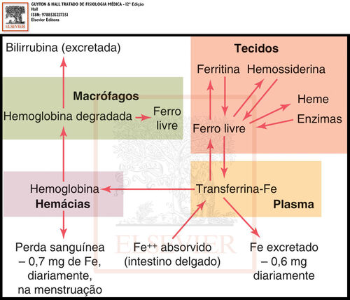 Figura32 7