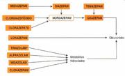 Benzodiazepínicos-eliminaçao