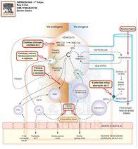 Ações estatinas fibratos resinas e ezetimiba