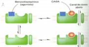 Receptor GABAa