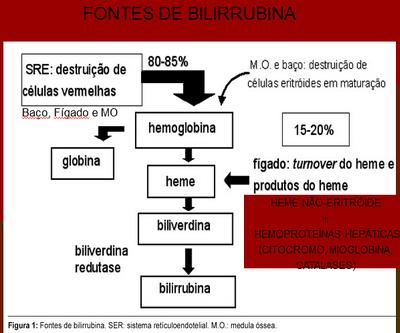 Fonte bilirrubina
