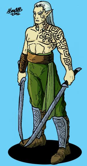 Silvan elf blade dancer by shabazik-d5o4dgf