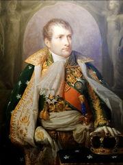 Napoleon Ier Andre Appiani