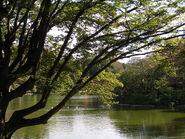 Parc Montsouris le lac
