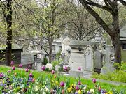 Pere Lachaise looking down the hill