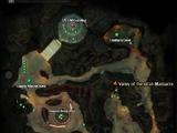 Disceroa Colony