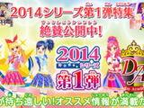 Data Carddass Aikatsu! 2014 Series - Part 1