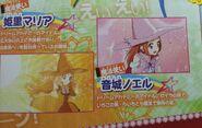 Aikatsu movie3 pamphlet4