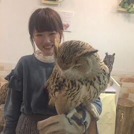MegumiYamaguchi