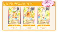 Cardcase staranis selectionpack img products18