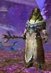 Ice Claw Head Priest