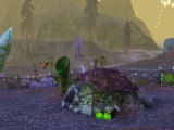 Sprigg Habitat