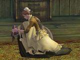 Dungeon Maid