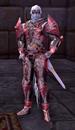 Warrior Test Subject
