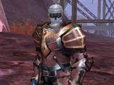 Citadel Overseer