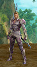Sentinel Leader (Elyos)